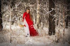 Dziewczyna w kostiumowym Małym Czerwonym Jeździeckim kapiszonie z psem jak wilk zdjęcia stock