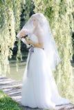 Dziewczyna w ślubnej sukni Fotografia Stock