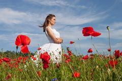 Dziewczyna w maczka polu zdjęcie royalty free