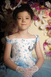 Dziewczyna w mlecznoniebieskiej balowej todze Obraz Royalty Free