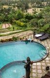 Dziewczyna w nieskończoność basenie w kierunku dżungli z palmtrees obrazy stock