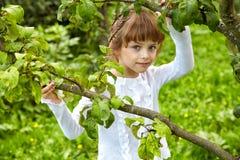 Dziewczyna w ogródzie wiosny popołudnie Fotografia Royalty Free