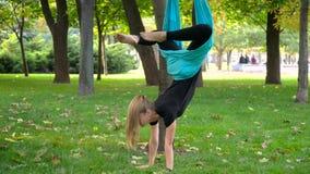Dziewczyna w parku angażował w powietrzny joga Zdjęcie Royalty Free