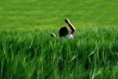 Dziewczyna w pszenicznym polu Obrazy Stock