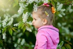 Dziewczyna w różowym bluzki obwąchaniu kwitnie Obraz Royalty Free