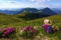Dziewczyna w słomianym kapeluszu z tylnym workiem i siedzi wśród krzaków rododendronowi kwiaty Krajobraz z górami Fotografia Royalty Free