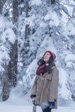 Dziewczyna w sosnowym lesie z śniegiem wszędzie zdjęcie stock