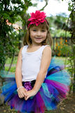 Dziewczyna w spódniczce baletnicy. Zdjęcie Stock
