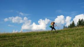 Dziewczyna wycieczkowicz z plecakiem na trawy wzgórzu zbiory
