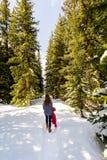 Dziewczyna Wycieczkuje w Śnieżnym lesie zdjęcie stock