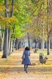 Dziewczyna z czarni włosy chodzi w pięknym parku w jesieni obraz stock