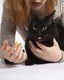 Dziewczyna z czarnym sowizdrzalskim kotem na bielu prawie odizolowywa zdjęcia royalty free