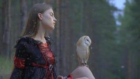 Dziewczyna z długie włosy w czarnej sukni egzamininuje sowy obsiadanie na jej kolanie zwolnione tempo, podczas gdy piórka spadają zbiory
