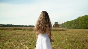 Dziewczyna z długimi ciemnego włosy spojrzeniami jako syndykat zbiera banatki Piękni Rosyjscy dziewczyna koszty w polu banatka zbiory