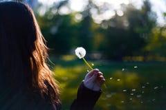 Dziewczyna z dandelion zdjęcia stock