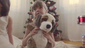 Dziewczyna z faszerującą psią pobliską choinką zbiory wideo
