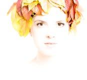 Dziewczyna z jesień liśćmi Fotografia Royalty Free