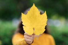 Dziewczyna z liściem klonowym jako Kanadyjski symbol Odizolowywający na kolor żółty Obrazy Stock