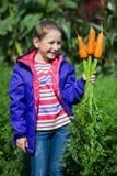 Dziewczyna z marchewkami w jarzynowym ogródzie Obrazy Royalty Free
