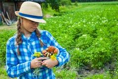Dziewczyna z pieczarkami w starej wiosce Zdjęcie Royalty Free