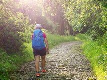 Dziewczyna z plecakiem podróżuje wzdłuż lasu zdjęcia royalty free