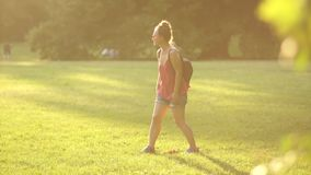 Dziewczyna z psem w parku dla spaceru Pies przynosi kij swój właściciel, psi szkolenie, zmierzch w parku, lato zbiory wideo