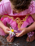 Dziewczyna z stokrotką Obrazy Royalty Free