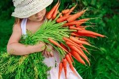 Dziewczyna z wiązką marchewki świeżo Zdjęcia Royalty Free