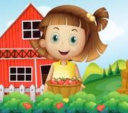 Dziewczyna zbiera przy truskawkowym gospodarstwem rolnym Fotografia Royalty Free