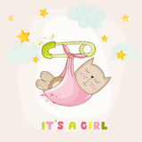 Dziewczynka kota dosypianie dziecko prysznic lub Przyjazdowa karta - Fotografia Royalty Free