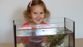 Dziewczynka patrzeje i bawić się z żółwiem który unosi się w akwarium Dziecko i zwierzę domowe zdjęcie wideo