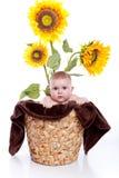 dziewczynka słoneczniki obraz royalty free