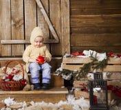 Dziewczynka uśmiecha się jabłka i trzyma Fotografia Stock