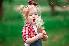 Dziewczynka w kwiatonośnej wiośnie uprawia ogródek dandelions Obrazy Stock
