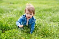 Dziewczynki czołganie na zielonej trawie Obraz Stock