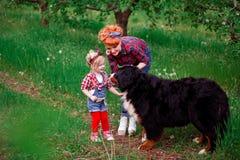 Dziewczynki kobieta z psim Bern w wiosna ogródzie Fotografia Royalty Free
