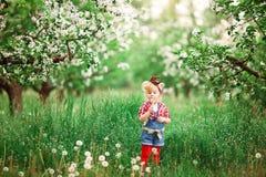 Dziewczynki wiosna uprawia ogródek dandelions Fotografia Royalty Free