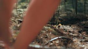 Dziewczyny chodzi na lasowym mech w sukniach zbiory