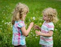 Dziewczyny dmucha dandelion Obraz Stock
