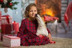 Dziewczyny dziecko świętuje boże narodzenia z psim Jack Russell Terrier przy obrazy royalty free
