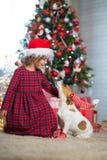 Dziewczyny dziecko świętuje boże narodzenia z psim Jack Russell Terrier przy zdjęcie stock