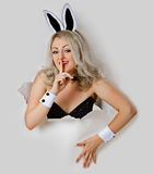 dziewczyny dziura patrzeje seksownego figlarnie królika Obraz Stock