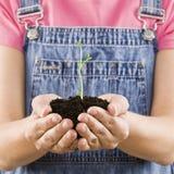 dziewczyny gospodarstwa ziemi sadzonki young Zdjęcia Stock
