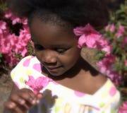 dziewczyny haitańczyka Obrazy Stock