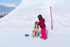 Dziewczyny i bezdomny pies w zimie Fotografia Royalty Free
