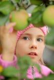 dziewczyny jabłczany drzewo Zdjęcia Royalty Free