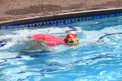 dziewczyny mały basenu dopłynięcie fotografia royalty free