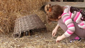 dziewczyny mały sztuka szczeniak zdjęcie wideo