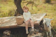 Dziewczyny miło elegancki ubierający w pulowerze z blondynem wydaje czas w wiosce z koszykowy pełnym jabłka karmi zwierzęcego koź obraz stock