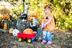 Dziewczyny mienia bania pojęcie kalendarzowej daty Halloween gospodarstwa ponury miniatury szczęśliwa reaper, stanowisko kosy Obraz Stock